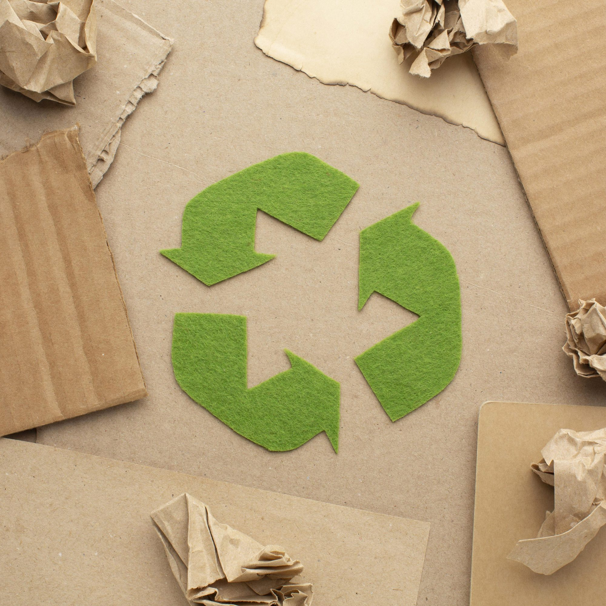Recyclage_Epilog4